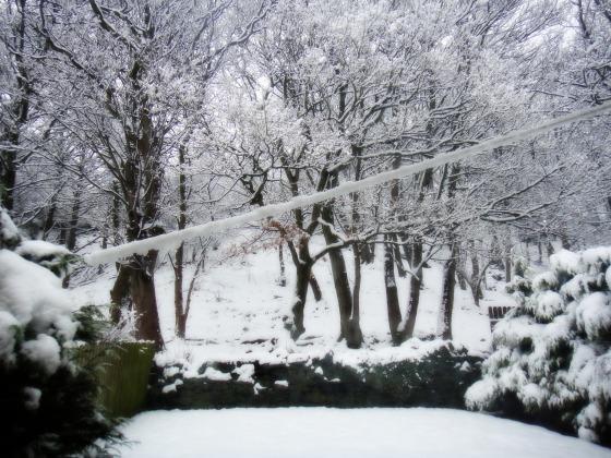 snow012013